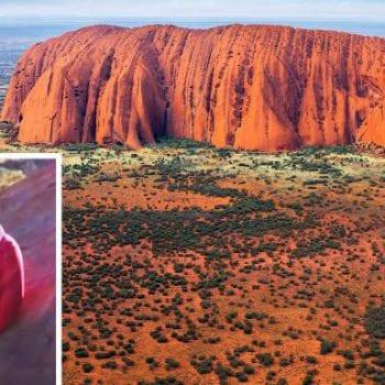 Climb Uluru